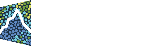 The Paul G. Allen Frontiers Group